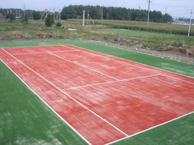 Универсальная спортивная площадка. д. Гожа, Беларусь